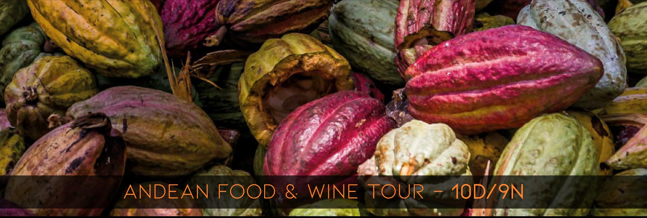exotic food and wine in Ecuador tours