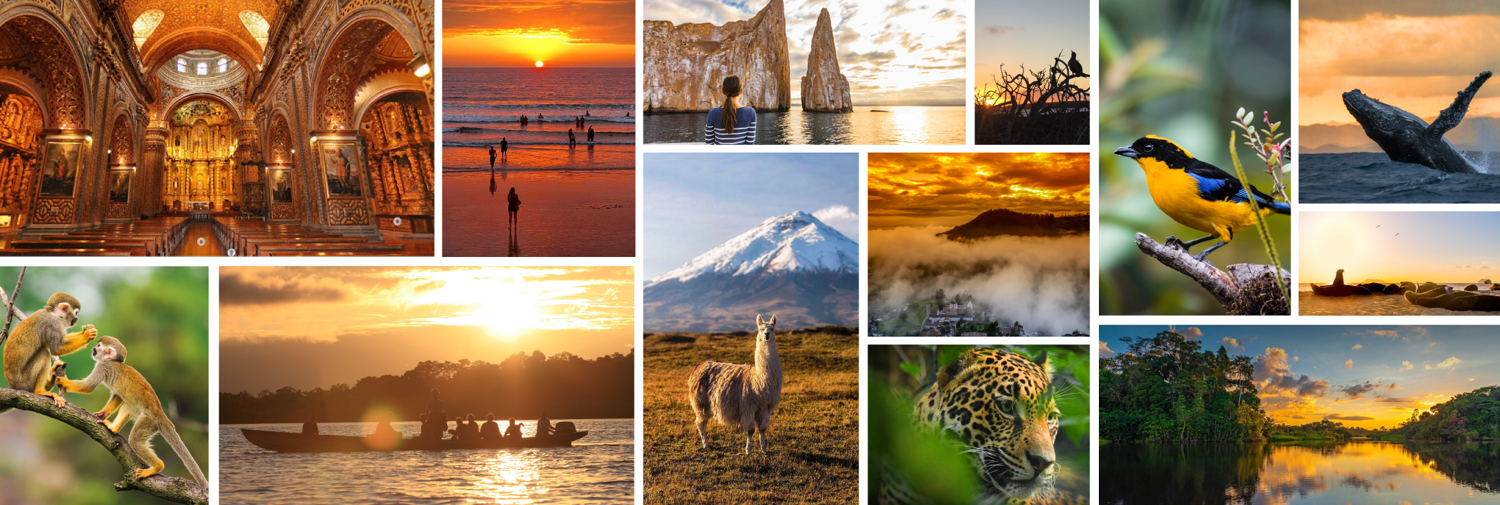Travel Styles DMC Andean Travel Company Essence in Details Ecuador and Galapagos Islands