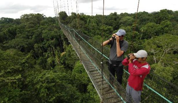 Explore the amazon glbt tours safe travels