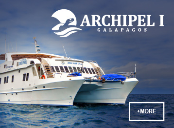Archipel I Galapagos Islands safe travels