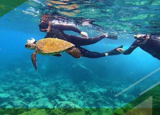 snorkeling-in-galapagos-islands-espiniza-point